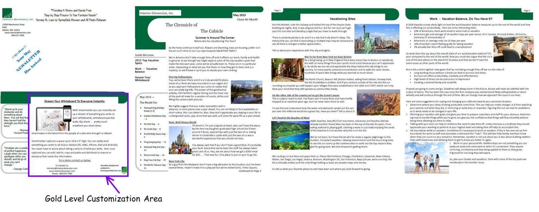 Bronze Newsletter Customization Area