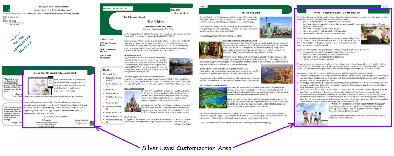 Silver Newsletter Customization Area